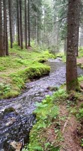 lago-austria-verde-gruner-see-stiria